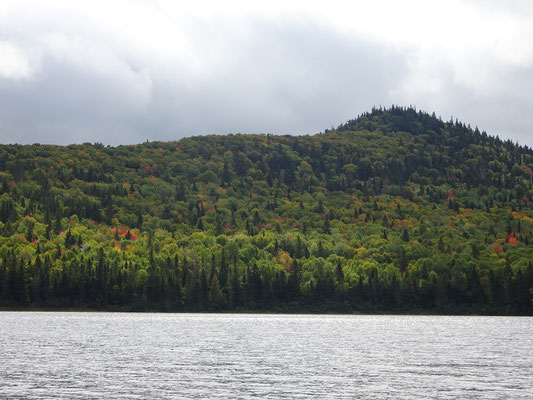 Urlaub in New Brunswick: Blick über den Big Nictau See im Mount Carleton Provincial Park.