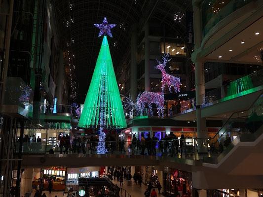 Black Friday in Toronto: Weihnachtsbaum oder Weihnachtsrakete?
