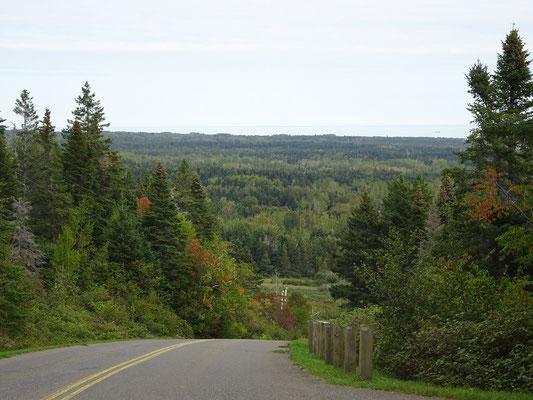 Urlaub in Quebec: Blick über dichten Wald auf der Ostseite des Forillon Nationalparks.