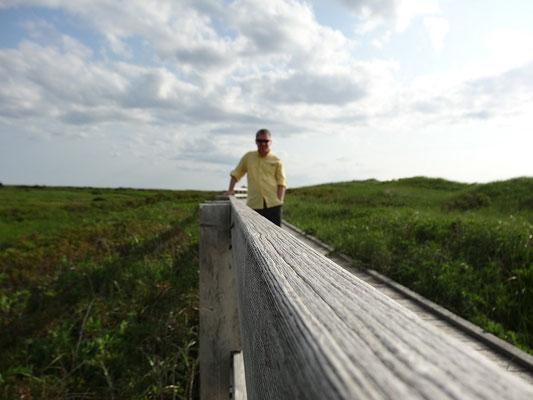 Kleines Selbstbildnis in der Nähe von Port Hood, Nova Scotia.