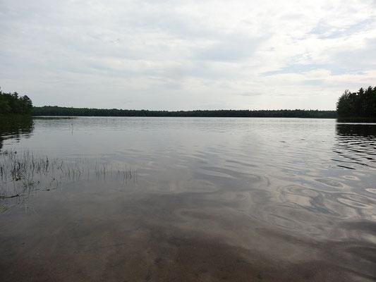 Ruhiger Blick auf einen See im Kejimkujik National Park.