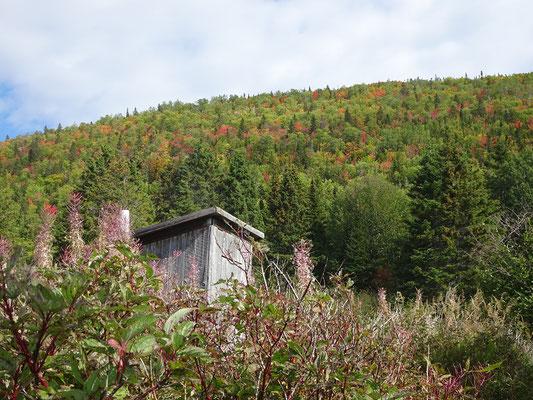 Urlaub in Quebec: Herbstlicher Besuch im Forillon Nationalpark.
