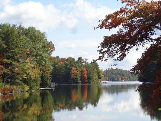 Herbstliche Idylle in Ontarios Muskoka-Region.