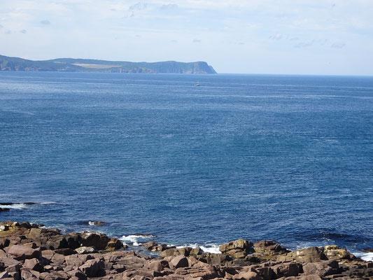 Urlaub in Neufundland: Blick von Cape Spear Richtung Signal Hill und St. John's.