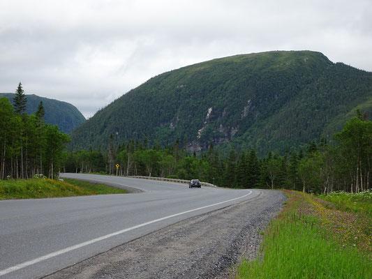 Fahrt von Deer Lake in den Gros Morne Nationalpark: Bäume und Berge überall.