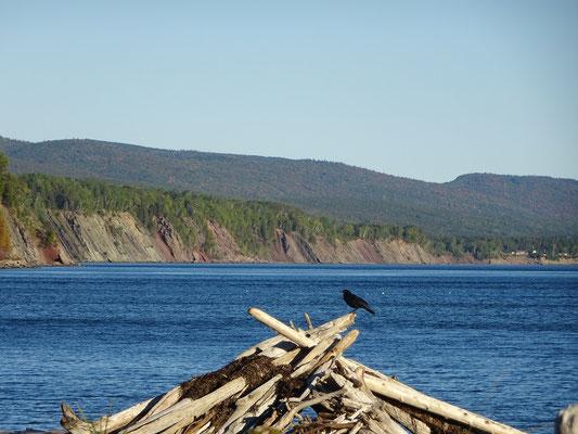Urlaub in Quebec: Strandszene aus dem Westen des Forillon Nationalparks.