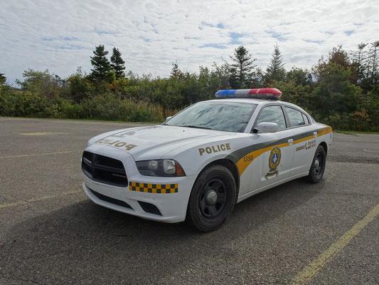 Urlaub in Quebec: Streifenwagen der Polizei im Forillon Nationalpark.