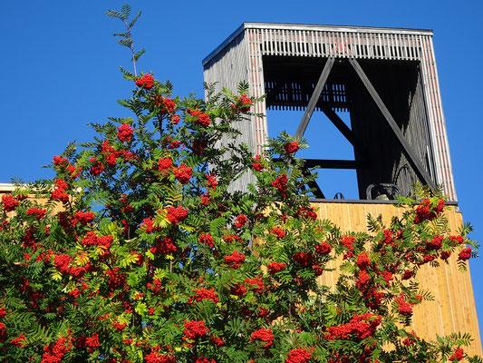 Urlaub in Quebec: Blick auf den Glockenturm der Kathedrale von Gaspé.