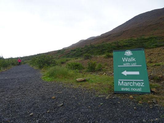 Wandern im Gros Morne National Park: Auf den Tablelands bieten die Parkranger sogar geführte Wanderungen an.