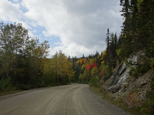 Herbsttour in Quebec: Strasse im Parc national de la Gaspésie.
