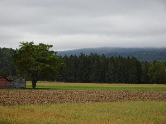 Urlaub in New Brunswick: Eindrücke von der Appalachian Range Route.