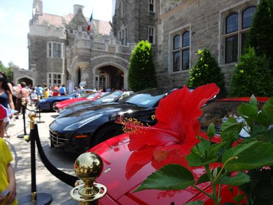 Blick auf Ferraris vor dem Eingang zur Casa Loma.