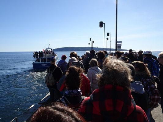 Urlaub in Quebec: Auch im Herbst noch guter Besuch bei der Bootstour um den Rocher Percé und die Bonaventure Insel.