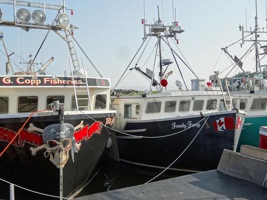 Fischerboote im kleinen Hafen von Alma in New Brunswick.