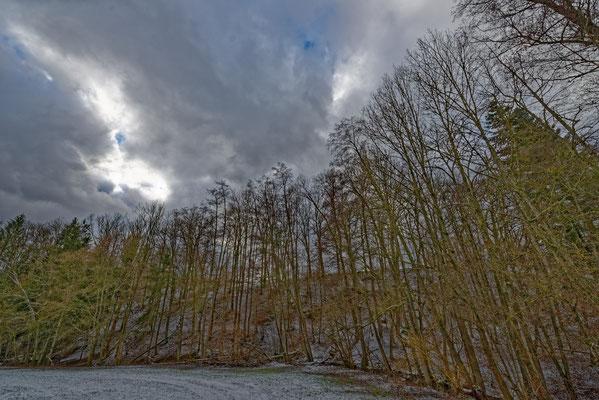 2021: Winterspaziergang im Schwäbischen Wald