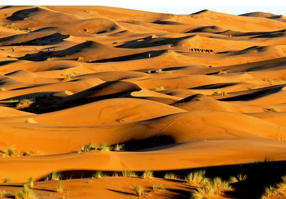 2008: Abend in der marokkanischen Sahara