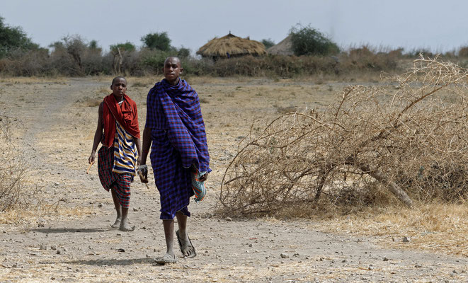 2016: Massei in Tansania