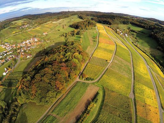2019: Weinberge per Drohne im Herbst im Schwäbischen Wald