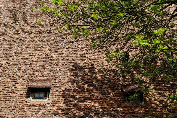 2010: Ein Dach beim Weltkulturerbe Kloster Maulbronn