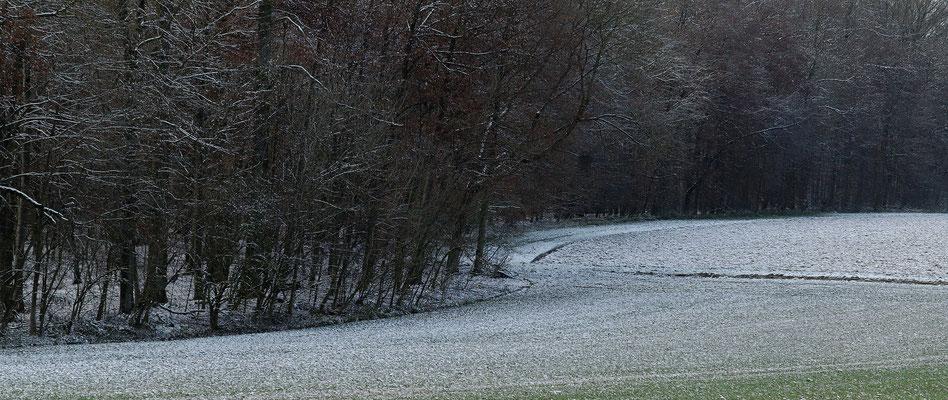 2011: Winterlandschaft bei Affalterbach