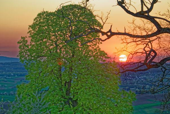 2020: Abendliche Sicht von der Burg Lichtenberg bei Oberstenfeld
