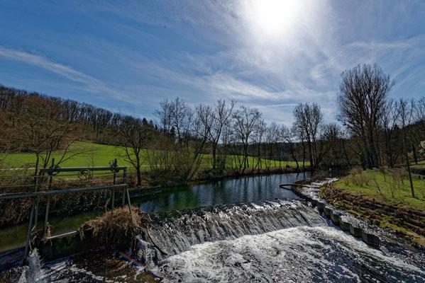 2021: Frühjahr an der Rems (Neckar-Nähe)