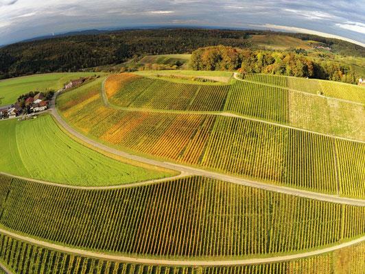 2019: Weinberge per Drohne im Herbst im Schäbischen Wald