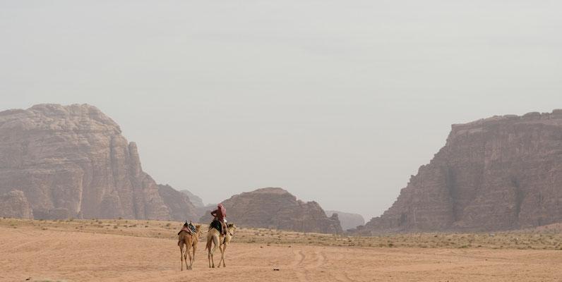 2014: Abendlicher Ausritt im Wadi Rum (Jordanien)