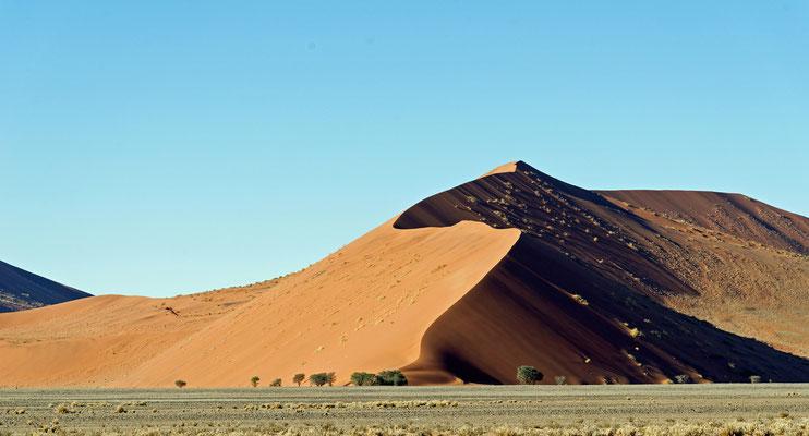 2014: Morgentliche Dünenoptik in der Namib-Wüste, Namibia