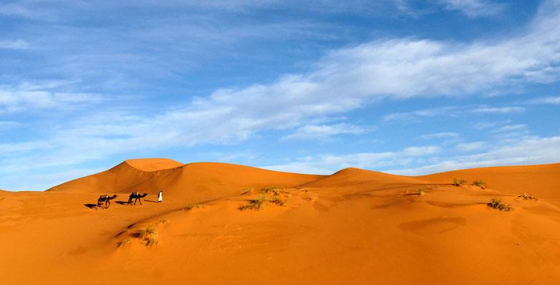 2008: Einsame Krawane in der Sahara, Marokko