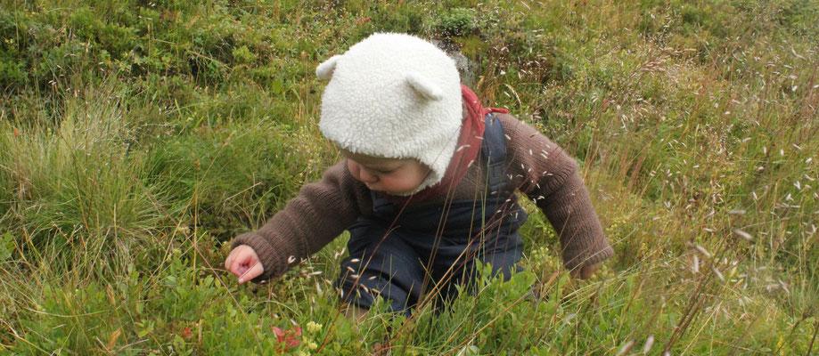"""September 2013 in Norwegen; """"Norwegenpullover"""" + Halstuch aus der gleichen Wolle mit Microfaseranteil"""