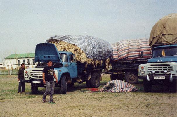 mit Wolle und Fellen beladene LKWs, aufgenommen von ritsch-ratsch