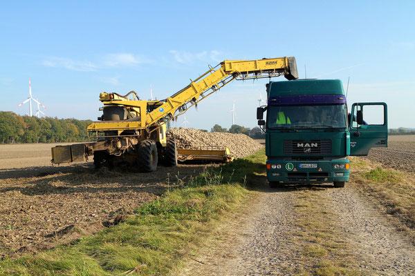 In 4 Minuten werden 25 Tonnen Rüben verladen