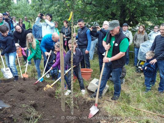 Albert Schlipf wird bei der Pflanzung von vielen großen und kleinen Helfern tatkräftig unterstützt.