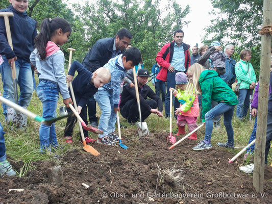 Die anwesenden Kinder und ihre Eltern helfen fleißig bei der Baumpflanzung mit.