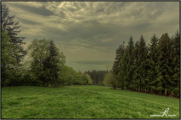 Blick auf den Bodensee - Pollenflug