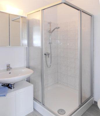 Das Bad besteht aus Waschtisch, Dusche und WC.