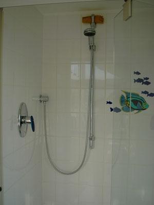 Duschanlage mit Grohe Taron UP-Brausemischer, Grohe Relexa Brausestange 900mm, mit Schlauchanschluß, Handbrause und Brauseschlauch