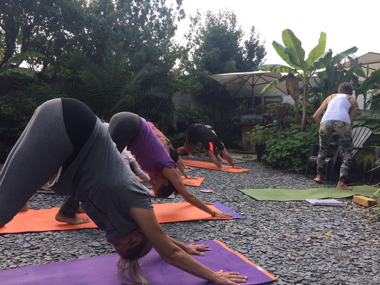 Les Jardins de la Boirie Ly Reiki Yoga 7