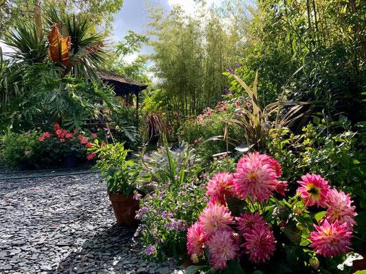 Les Jardins de la Boirie Ly Reiki Yoga 4
