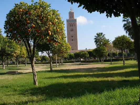Ly Reiki Yoga Maroc