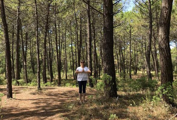 Ly Reiki Yoga Ile d'Oleron - Forêt des Saumonards