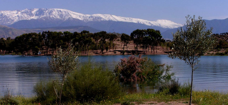 Ly Reiki Yoga Maroc - Takerkoust