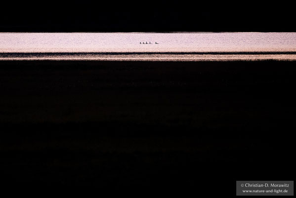 Eine Gruppe Taucher auf einem Moorsee im letzten Abendlicht