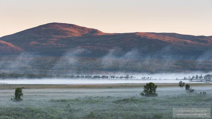 Sonnenaufgang über einer Sumpflandschaft