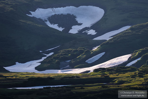 Tundra im Abendlicht