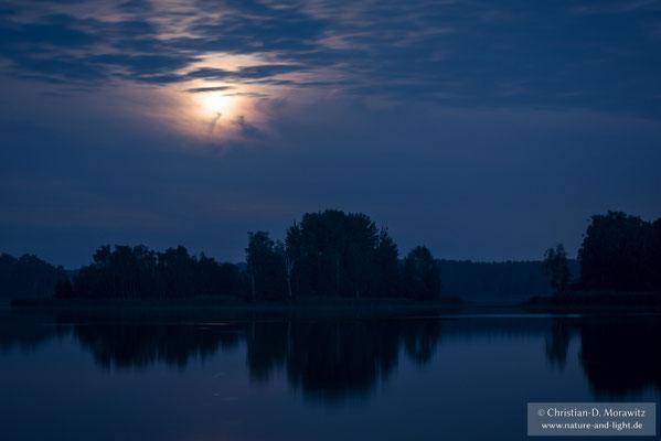 Teich im Mondschein