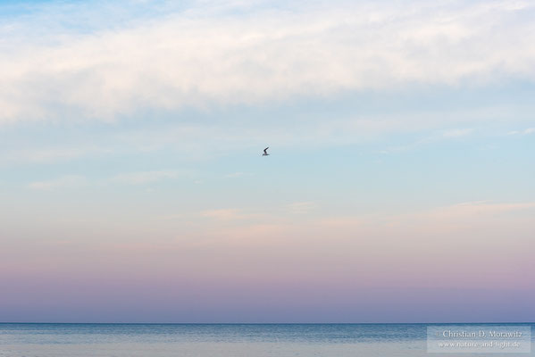 Die Ostsee bei Maglehem