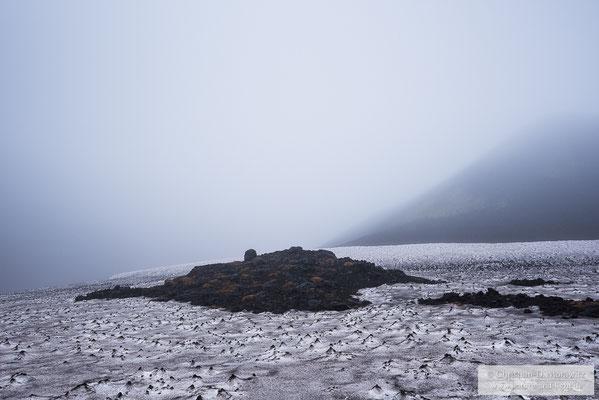 Im Nebel ergaben sich immer wieder spannende Stimmungen