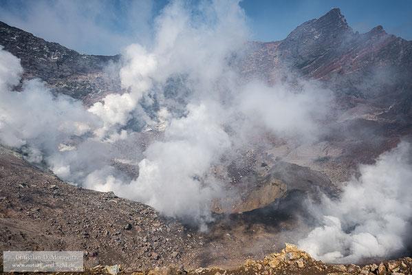 Dampfender aktiver Krater des Motnovsky Vulkans